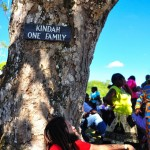 Postcard Of The Week: Under The Kindah Tree in Accompong Town, Jamaica