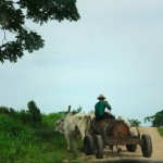 Encounter with A Mennonite in Belize