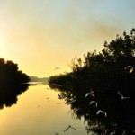 Postcard: Sunset On The Negril River